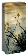 Changing Sky Portable Battery Charger
