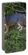 Channel Island Fox Portable Battery Charger