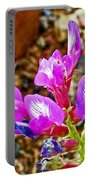 Chaparral Pea In Painted Desert Of Petrified Forest National Park-arizona  Portable Battery Charger