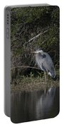 Charleston Birds Portable Battery Charger