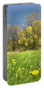 Charming View Portable Battery Charger