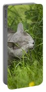 Chartreux Cat And Grass Portable Battery Charger