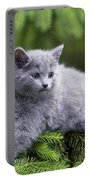 Chartreux Kitten Portable Battery Charger