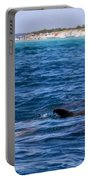 Chasing Dolphins  Portable Battery Charger