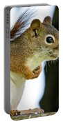Chatty Squirrel Portable Battery Charger