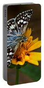 Checkered Skipper Square Portable Battery Charger
