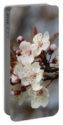 Cheerful Cherry Blossoms Portable Battery Charger