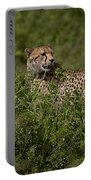 Cheetah   #0089 Portable Battery Charger