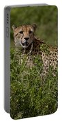 Cheetah   #0090 Portable Battery Charger