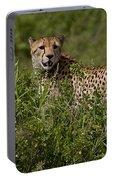 Cheetah   #0090 Portable Battery Charger