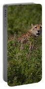 Cheetah   #0093 Portable Battery Charger