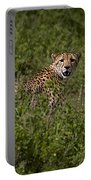 Cheetah   #0095 Portable Battery Charger