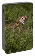 Cheetah   #0095 Portable Battery Charger