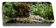 Cheetah 2 Portable Battery Charger