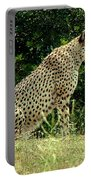 Cheetah-79 Portable Battery Charger