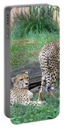 Cheetah Brothers  Portable Battery Charger