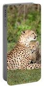 Cheetah Cub Acinonyx Jubatus Playing Portable Battery Charger