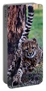 Cheetah Cubs Portable Battery Charger