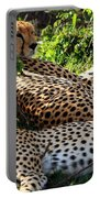 Cheetah - Masai Mara - Kenya Portable Battery Charger