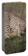 Cheetah On Termite Mound Portable Battery Charger