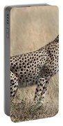 Cheetah Ready For The Off Portable Battery Charger