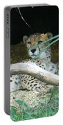 Cheetah Resting  Portable Battery Charger