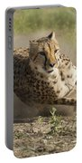 Cheetah Run 2 Portable Battery Charger