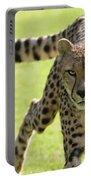 cheetah Running Portrait Portable Battery Charger