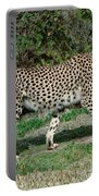 Cheetah Strolling Portable Battery Charger