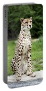 Cheetah's 01 Portable Battery Charger