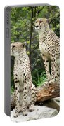 Cheetah's 02 Portable Battery Charger