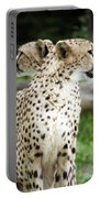 Cheetah's 04 Portable Battery Charger
