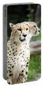Cheetah's 05 Portable Battery Charger