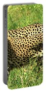 Cheetahs Running Portable Battery Charger