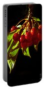 Cherries Portable Battery Charger