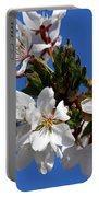 Cherry Blossom Blue Sky - 1 Portable Battery Charger