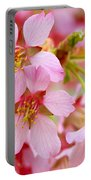 Cherry Blossom Special II Portable Battery Charger