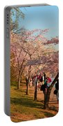 Cherry Blossoms 2013 - 007 Portable Battery Charger