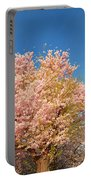 Cherry Blossoms 2013 - 016 Portable Battery Charger