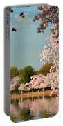 Cherry Blossoms 2013 - 023 Portable Battery Charger