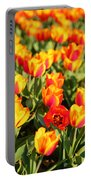 Cherry Blossoms 2013 - 032 Portable Battery Charger