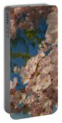 Cherry Blossoms 2013 - 035 Portable Battery Charger