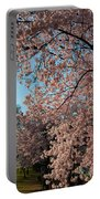 Cherry Blossoms 2013 - 038 Portable Battery Charger