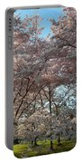 Cherry Blossoms 2013 - 049 Portable Battery Charger