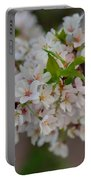 Cherry Blossoms 2013 - 068 Portable Battery Charger