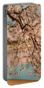 Cherry Blossoms 2013 - 079 Portable Battery Charger