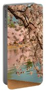 Cherry Blossoms 2013 - 080 Portable Battery Charger