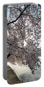 Cherry Blossoms 2013 - 092 Portable Battery Charger