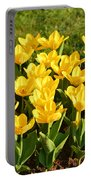 Cherry Blossoms 2013 - 094 Portable Battery Charger