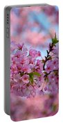 Cherry Blossoms 2013 - 095 Portable Battery Charger